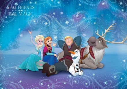Disney Frozen full size wall wallpaper mural